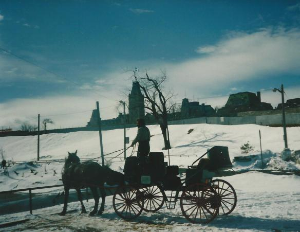 nice day for a buggy ride in old Quebec